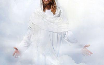 MENSAJE DEL MAESTRO JESÚS: TRASCENDIENDO EL DOLOR, RENACIENDO A LA LUZ